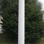 Columna Toscano Verniprens