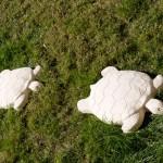 Marca huellas Tortuga Verniprens
